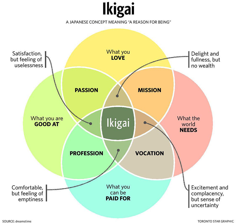 nice to know ikigai s